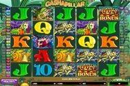 Play Cashapillar for Free