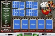 Play Deuces Wild (5-hands) for Free