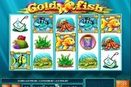 Play Gold Fish for Free