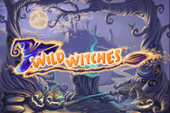 Play Wild Witches for Free
